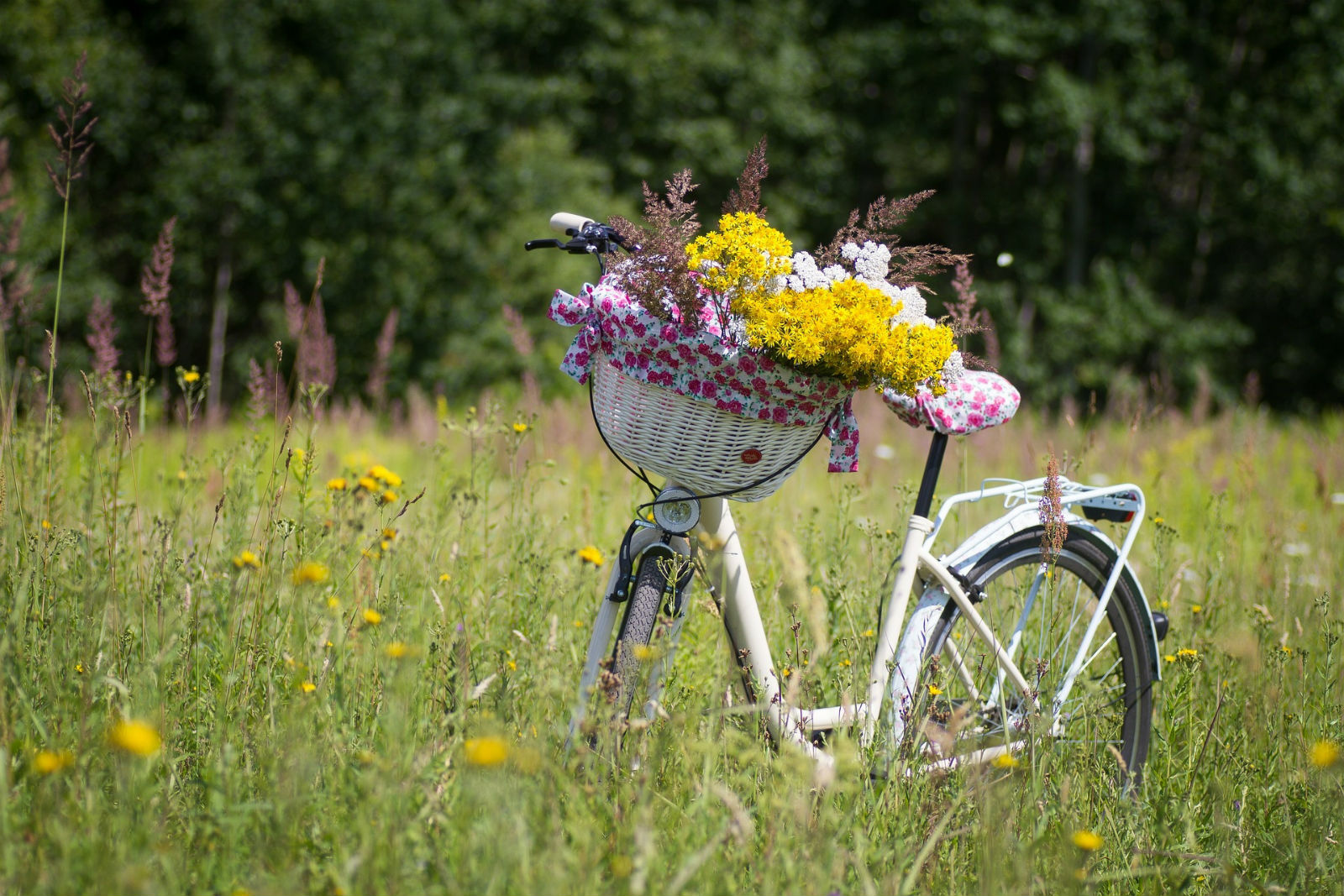 Fahrradtouren rund um Kulmbach